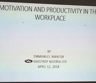Motivation and Productivity in the Workplace